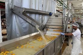 """Отваряне на мярка 4.2 """"Инвестиции в преработка/маркетинг на селскостопански продукти"""""""